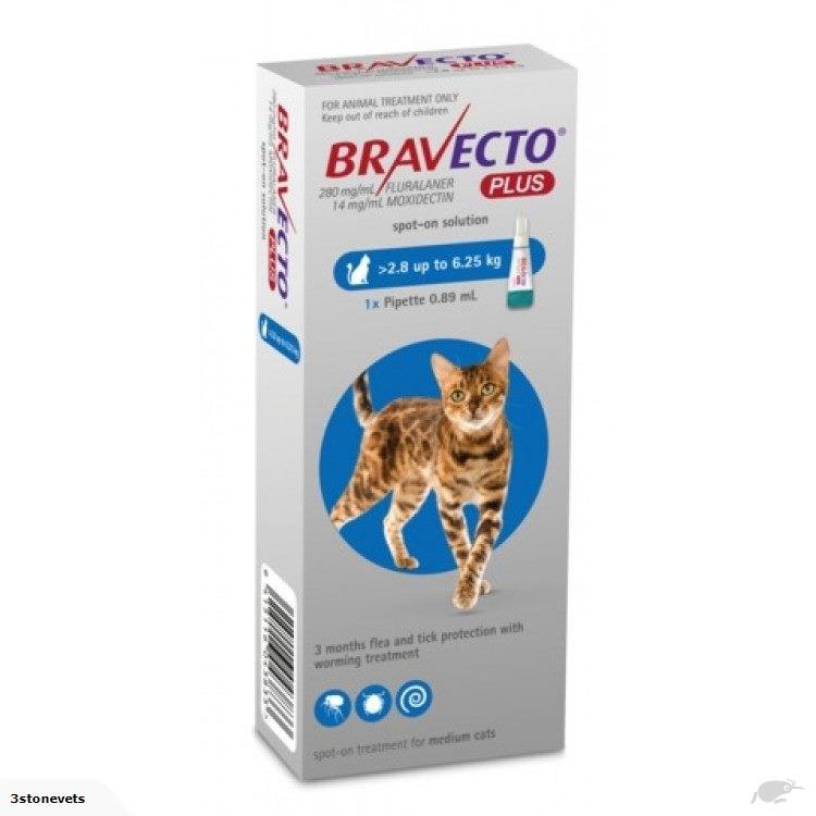Bravecto Plus Medium Cat 2 8kg 6 25kg 3 Stone Vets Ltd